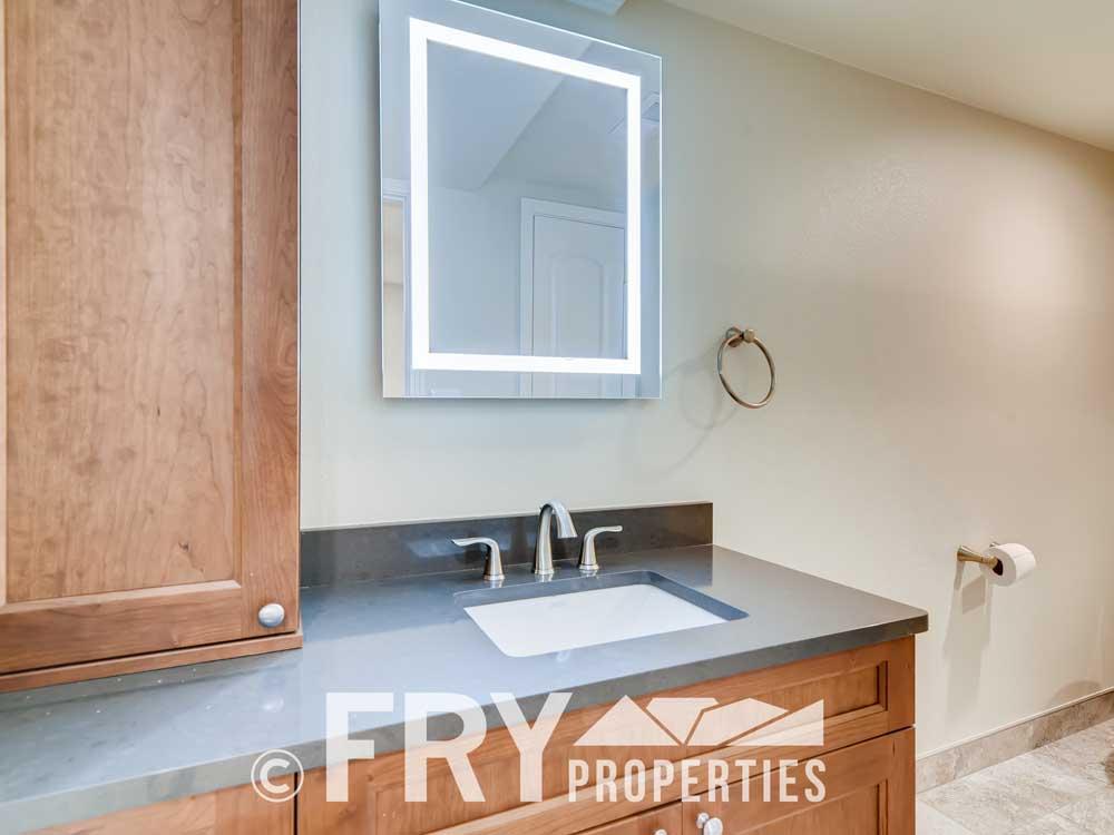 486 Jackson Street Denver CO-print-023-020-Lower Level Bathroom-3600x2400-300dpi