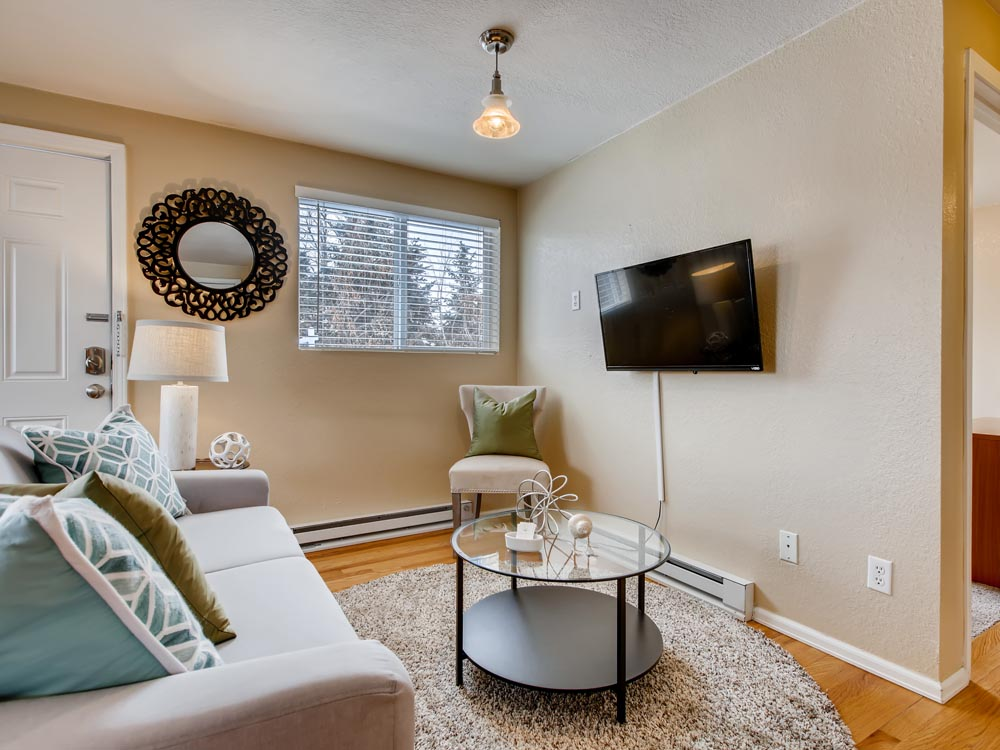 3717 Wolff Street Denver CO-print-005-005-Living Room-3600x2400-300dpi